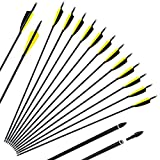 """SinoArt 30"""" Carbon Arrows 3""""/4"""" Vane with Screw-in Points Replaceable Tips for Recuve Bow & Compound Bow Targeting Or Hunting (Pack of 12)"""