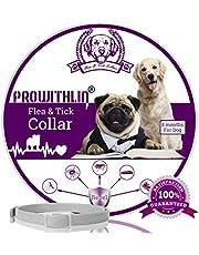 Collare antipulci e zecche per Cani, Collare Regolabile Impermeabile, Soluzione Naturale Contro i parassiti per Giovani Cani, 63 cm 8 Mesi Taglia Unica per Tutti i Cani.