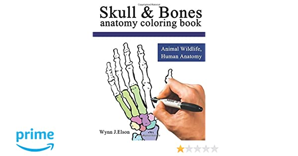 amazoncom skull and bones animal wildlife human anatomy coloring book 9781973761839 wynn j elson books - Veterinary Anatomy Coloring Book