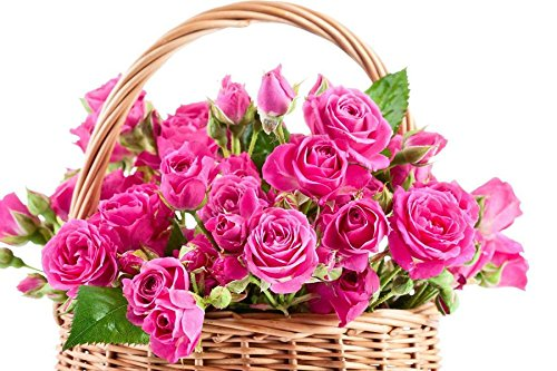 24x16 Inches Wall-Canvas Stickers Poster - Pink Roses In A Basket - Wall Art Prints For Home Decoration
