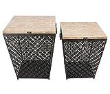 Benzara Metal Side Table with Storage, Set of 2, Black
