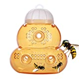 SCHOME Natural Wasp Trap,Sting Free,Traps Yellow Jackets, Hornet Best Wasp Pest Control Use for Farm,Garden,Yard