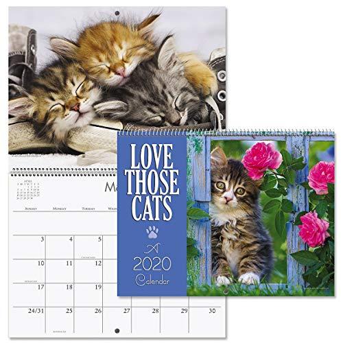 2020 Love Those Cats Wall Calendar- 12