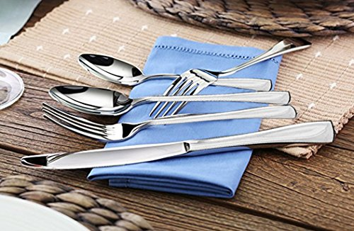 Shiny Elegant Stainless Steel Flatware Set – Silverware Se