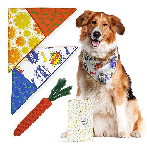 - Dog Bandana for Small and Medium Pets - Premium Set 2 Reversible Cute Style Cotton Puppy Scarves Triangle Accessories with Adjustable Snap Closure and 1 Carrot Rope Bite Resistant Chew Toy Dental Care