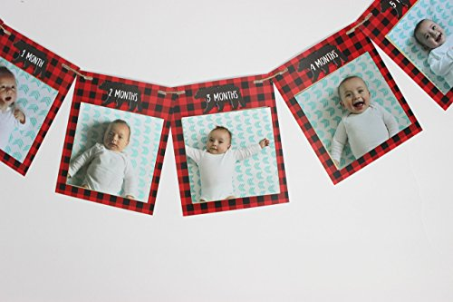 Buffalo Banner (Lumberjack First Birthday Monthly Photo banner, Fits photos 4x4, First Year photo banner, New born - 12 months)