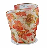 Beautiful Fall Leaves Orange & Green Sheer Wired Ribbon #40-2.5in x 10 yards