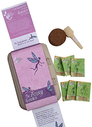 Fairy Garden Heirloom Starter Seed Kit