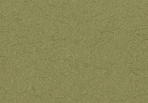 サンゲツ リザーブ 壁紙 (クロス) 糊なし (RE-2690) 和風・和モダン・和室 【1m単位切売】 表面強化 ウレタンコート 防かび (RE2690) (新品番 RE-7561)