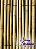 Peeled Reed Natural Fencing and Screening - 4.0m x 1.2m (13ft x 3ft 11')