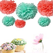Somnr® 3 Sizes Mixed Coral & Mint Tissue Paper Pom Poms Flowers Wedding Centerpieces Birthday Bridal Shower Party Decoration Christmas Favors by Somnr by Somnr