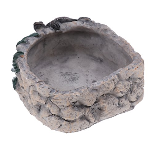 Homyl Reptile Tortoise Water Dish Food Bowl Toy For Amphibians Gecko Snakes Lizard 1PC by Homyl