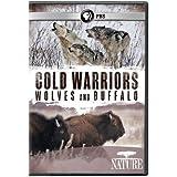 Nature: Cold Warriors - Wolves & Buffalos