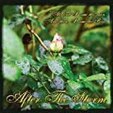 After the Storm by James Mccoy (2011-05-04)