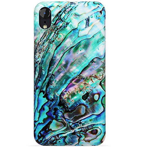 (VIVIBIN iPhone XR Case,Green Shell for Girls Women Clear Bumper Soft Silicone Rubber Cute Glossy TPU Cover Slim Fit Best Protective Thin Phone Case for iPhone XR [6.1