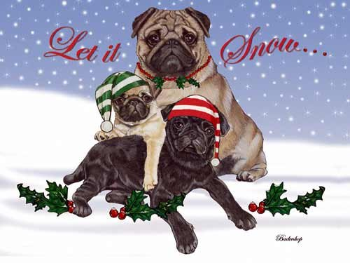 Pug Christmas Cards Snow : 10 Holiday Cards