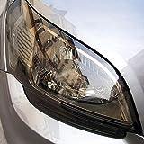 NewL 12 by 48 inches Self Adhesive Auto Car Tint Headlight Taillight Fog Light Vinyl Smoke Film Sheet Sticker Cover (light black)