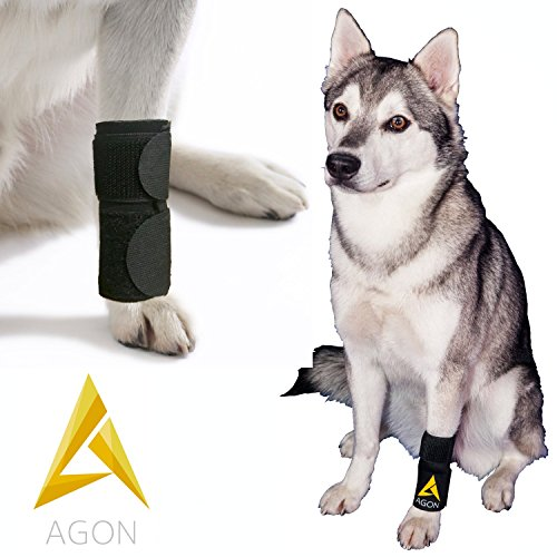 Agon Dog Canine Front Leg Brace Paw Compression Wraps With Protects Wounds Brace Heals and Prevents Injuries and Sprains Helps with Loss of Stability caused by Arthritis (Large/X-Large) by Agon