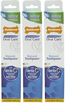 Nylabone Advanced Oral Care Natural Peanut Flavor Toothpaste 3pk