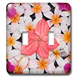 Danita Delimont - Flower - Floral decoration, Palau Pangkor Laut, Malaysia - Light Switch Covers - double toggle switch (lsp_225933_2)