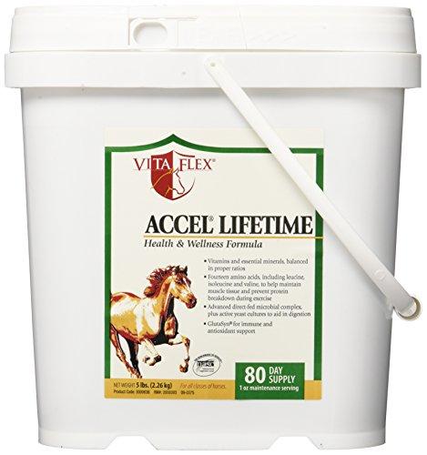 Vita Flex Accel Lifetime Health and Wellness Formula Horse Supplement