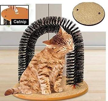 Christoopher Gato Gato Cepillo Pelo secador Gato arañando Gato Juguete: Amazon.es: Productos para mascotas