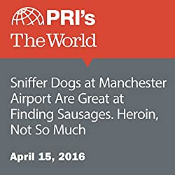 Sniffer Dogs at Manchester Airport Are Great at Finding Sausages. Heroin, Not So Much