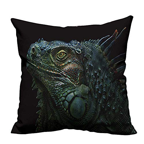 fengruihome Pillowcase with Zipper Green Iguana The Green Iguana is a Large,arboreal,Mostly herbivorous Species of Lizard Ultra Soft & Hypoallergenic (Double-Sided Printing) 21.5x21.5 inch