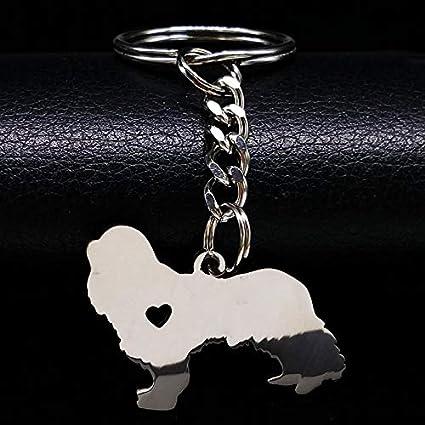 Amazon.com : Key Chains - Fashion Cavalier King Charles ...