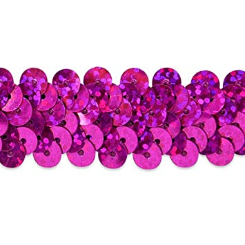 7//8-Inch Magenta Expo International 20-Yard 2 Row Starlight Hologram Stretch Sequin Trim