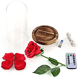 YSBER Beauty & The Beast Red Silk Rose and LED Light with Fallen Petals in Glass Dome on a Wooden Base for Lover, Mother, Girlfriend 3