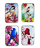 BIRDS Armored Credit Card RFID Blocking Wallet and Cash Holder, Set of 4 Styles