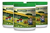 Super greens powder organic - GREEN SUPERFOOD BLEND 300G WITH NATURAL BERRY FLAVOR - boost eye health (3 Bottles)