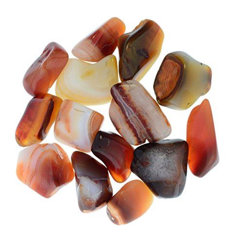Digging Dolls: 1 lb Tumbled Carnelian Stones from Madagascar - 0.75