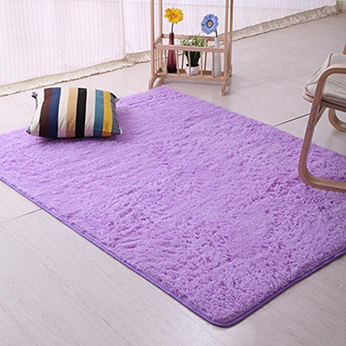 TRENTON Shaggy Soft Carpet Rug Slip Resistant Door Floor Mat - Purple