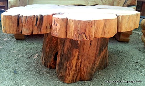 Large Naturally Unique Cypress Tree Trunk Handmade Coffee Table   Log  Rustic Chilean   Free International