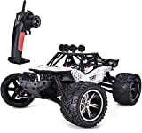 TOZO C2035 1:12 RC Cars High Speed 30MPH Scale RTR Remote Control Monster Truck Off Road Car Big Foot RC 2WD Buggy W/2.4G Challenger White