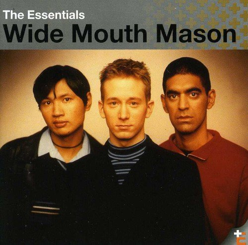 Wide Mouth Mason The Essentials