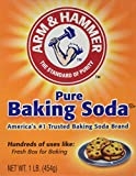 Arm & Hammer Baking Soda - 16 oz (1)