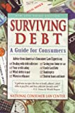 Surviving Debt, Deanne Loonin and Jonathan Sheldon, 1881793761