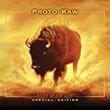 Before Became After [Limited Edition Digipak] by Proto-Kaw (2004-04-06)