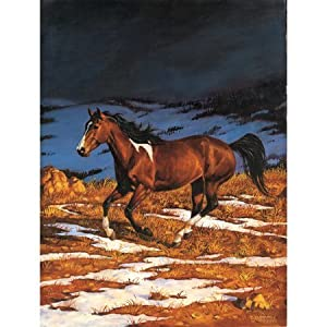 Chris Cummings Front Runner Approaching Storm Jigsaw Puzzle 500pc By Sunsout