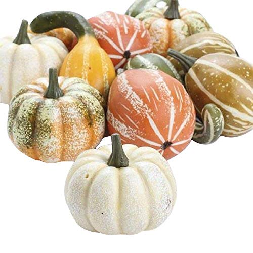 One Holiday Way Artificial Gourds and Pumpkins Assorted Fall Table Decoration, 12 Piece Set