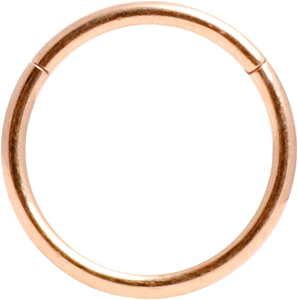 Orangelove Hypoallergenic Nose Rings 20G 18G 16G 14G 316l Surgical Steel Piercing Jewelry Hinged Segment Ring Body Piercing Nose Hoop Lip Rings Nose Helix Cartilage Rook Earrings for Men Women