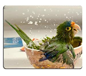 Bathing Funny Parrots National Birds Mouse Pads Customized Made to Order Support Ready 9 7/8 Inch (250mm) X 7 7/8 Inch (200mm) X 1/16 Inch (2mm) High Quality Eco Friendly Cloth with Neoprene Rubber MSD Mouse Pad Desktop Mousepad Laptop Mousepads Comfortable Computer Mouse Mat Cute Gaming Mouse pad by ruishername