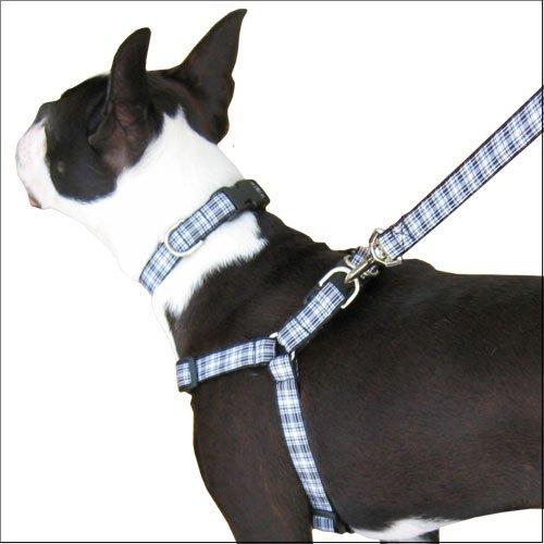 Plaid Step In Dog Harness, Menzies Tartan
