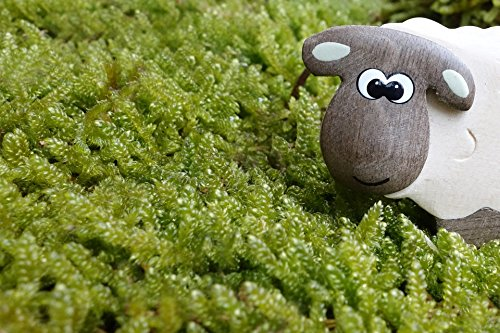 Home Comforts LAMINATED POSTER Eyes Meadow Wood Sheep Toys Moss Wooden Toys Poster 24x16 Adhesive Decal (Sheep Moss)