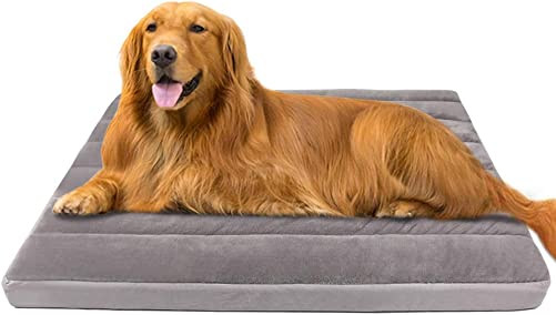 Large Dog Bed for Large Medium Small Dogs 39 47 Inch Soft Pet Foam Bed Mat Washable Anti Slip Sleeping Mattress Cuddler Pad with Thicker Removable Cover Grey
