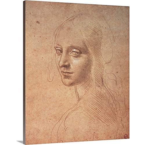 - Leonardo da Vinci Premium Thick-Wrap Canvas Wall Art Print Entitled Portrait of a Girl, by Leonardo da Vinci, 1483-1484. Royal Library, Turin, Italy 24