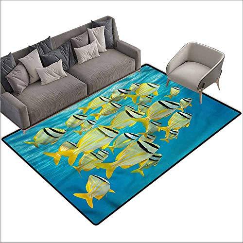 Bath Mat Set Kitchen Door Fish,Atlantic Ocean Fauna Design 36
